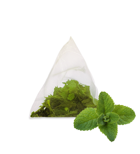 Product image herb tea menta