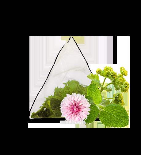 Product image herb tea frida k